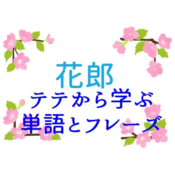 花郎 テテ シーン 韓国語